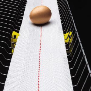 Лента для яйцесбора NSPH Soft Touch полипропиленовая