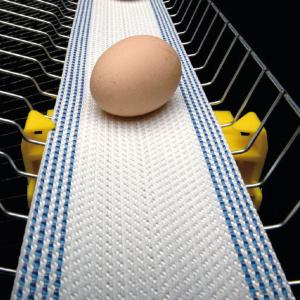 Лента для яйцесбора POL-B полипропилен 35% полиэстер 65%